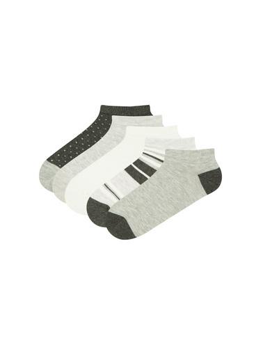 Penti Kadın Çok Renkli Blok 5Li Pa Çorap Seti PHX5B10921IY Renkli